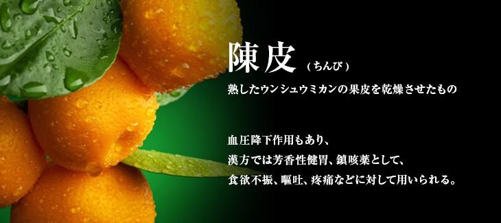 shichimi04